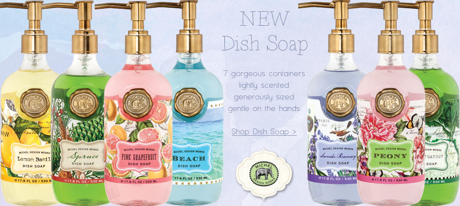 Dish Soap - New from Michel Design Works