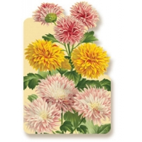 Chrysanthemums Art Cards