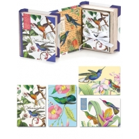 Humming Birds Book Box Notecards