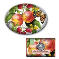 Peach Raspberry Large Soap and Soap Dish