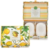 Lemon Basil Gift Box Soap
