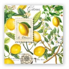 """a:1:{s:2:""""EN"""";s:22:""""Lemons Luncheon Napkin"""";}"""