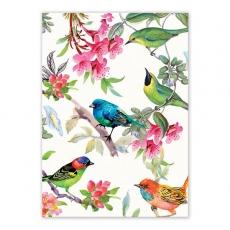 Bird Song Kitchen Towel Part 76