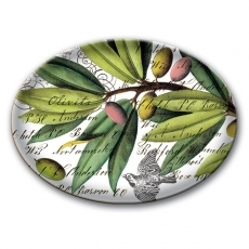 "a:1:{s:2:""EN"";s:27:""Olive Grove Glass Soap Dish"";}"