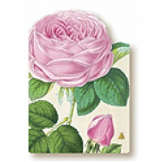 "a:1:{s:2:""EN"";s:19:""Rose Bloom Art Card"";}"